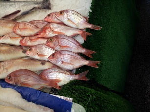 They look as though they've just jumped out of the sea, so fresh!