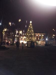 Christmas_Lights2[1]